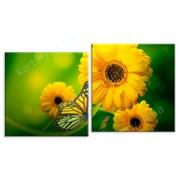 Картина Бабочка с желтым цветком фото