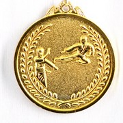 Медаль карате - золото фото