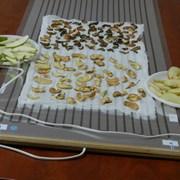 Бытовая инфракрасная сушилка для фруктов и овощей фото