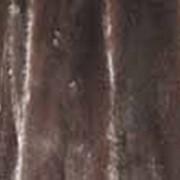 Шкурки норки не выделанные фото