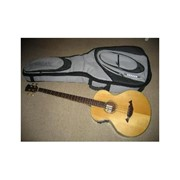 Акустическая бас гитара NTL-B N фото