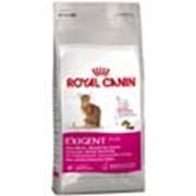 Корм для кошек Royal Canin Exigent Savour (для требовательных к запаху и текстуре) 2 кг фото