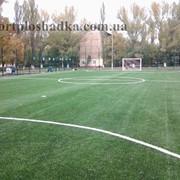 Уход, подготовка, обслуживание футбольных полей Харьков фото