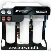 Система обратного осмоса Ecosoft RObust фото