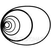 Кольца резиновые уплотнительные d от 2 до 390мм фото