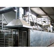 Линия по производству бугорчатой прокладки для куриных яиц фото