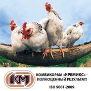 Комбікорм ПК 2 молодняк яєчних курей в віці 1-8 тижнів Стандарт фото