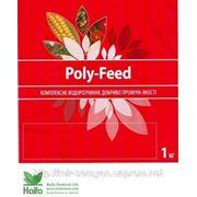 Удобрения Хайфа Poly-Feed «Multi-K»,13-5-42MgO (нитрат калия) 1кг. фото