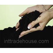 Предприятие по производству биогумуса фото