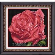 """Набор для рисования камнями """"Красная роза"""" 1192 фото"""