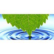 Экологическая и техногенная безопасность фото