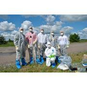 Научно-практический семинар-тренинг «Методы проведения радиационного после аварийного мониторинга» фото