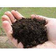 Восстановление плодородия почвы фото