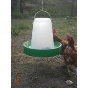 Кормушка бункерная для кур бройлеров уток индюков гусей и другой домашней птицы фото