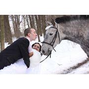 Лошади на свадьбе фото