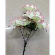 Цветы искусственные 6 бутонов кливии 0238A-2 фото