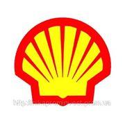 Shell Cassida Grease RLS 00 фото