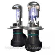 Лампы биксенон BOSCH H4 HID 6000K, купить фото