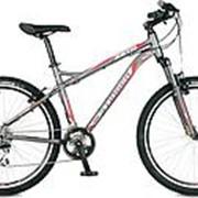 Велосипед Stinger Zeta V 26 2016 фото