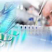 Научные эксперементы. фото