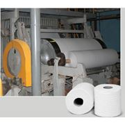 Бумага - основа для туалетной бумаги из целюлозы ТУ BY 700032335.031-2007 фото