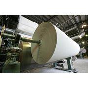 Основа для производства туалетной бумаги. Альбатрос. фото