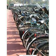 Прокат аренда велосипедов фото