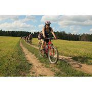 Прокат аренда туристических велосипедов фото