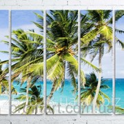 Модульна картина на полотні Пальми на пляжі код КМ100150(150)-025 фото