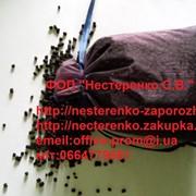 Активированный уголь для аквариумных фильтров-350 грамм фото