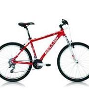 Прокат, аренда горно-туристических велосипедов фото