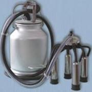 Установка доильная стационарная УДС-В (Milking Mashine UDS-V) фото