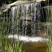 Декоративные водоемы фото