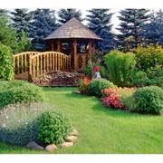 Благоустройство сада, заказать, Киев, Киевская обл., Украина фото