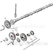 Двигатель — Распределение — Дон-1500, Дон-1200 фото