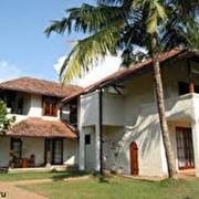 Экзотический отдых на острове Цейлон. фото
