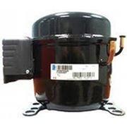 Компрессор Tecumseh Europe L'Unite Hermetique AEZ 2411 Z низкотемпературный LBP (R-404a) фото