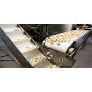 Лента пищевая (конвейерная) полиуретановая фото