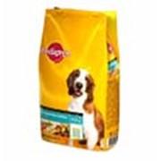 Корм Pedigree для взрослых собак всех пород 13 кг фото