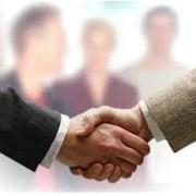 Международное сотрудничество, деловые услуги фото