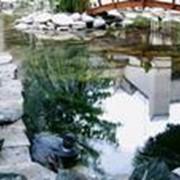 Строительство декоративных водоемов, каскадов, ручьев фото