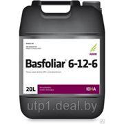 Басфолиар 6-12-6 (жидкое микроудобрение) фото