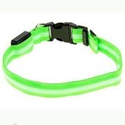 Светящийся ошейник, 45-50 см, Зеленый фото