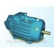 Электродвигатель МТН (F) 112 5кВт/1000 фото