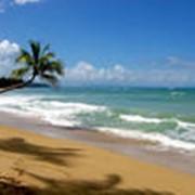 Туры в Доминикану фото