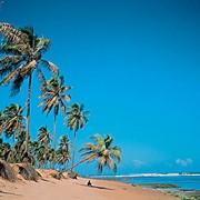 Туры в Маврикий фото