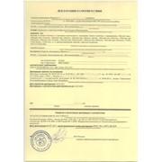 Декларация Соответствия ГОСТ Р фото