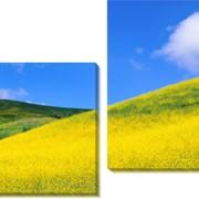 Картина модульная Холмы_2 фото