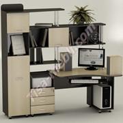 Компьютерный стол Тиса СК-20 фото