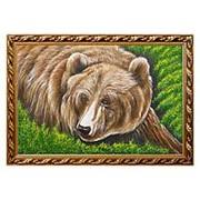 """Картина """"Медвежья морда"""" багет 46х66 см фото"""
